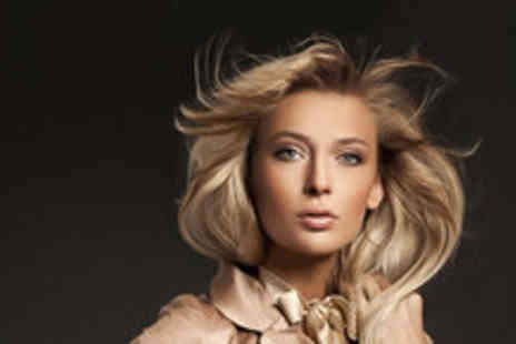 Gemini Hair Fashion - Half head of highlights plus a wash cut blow dry treatment and head massage - Save 78%