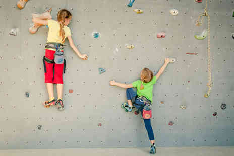 The Climbing Hangar - One hour climbing session  - Save 47%