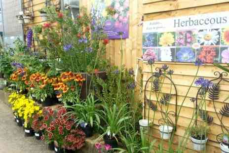 Welland Vale Garden Inspirations -  £30 Towards Garden Plants  - Save 50%