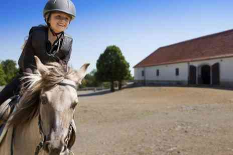 Wellybobs Farm Park - Entry to Wellybobs Farm Park  For Child and Adult Plus Childs One Hour Pony Experience  - Save 0%