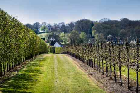 Hush Heath Estate -  Award Winning Vineyard Tour & Lunch for 2  - Save 47%