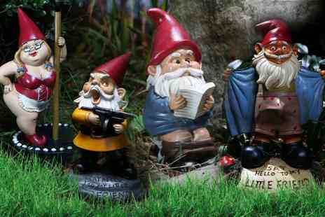 Deal Nation Direct - Novelty Garden Gnomes  - Save 47%