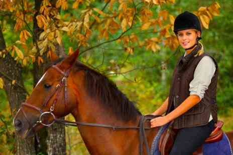 Old Town Riding School - One Hour Riding Lesson  - Save 70%