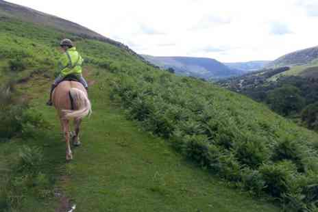 Grange Trekking - Horse Riding Lesson and 60 Minute Trek - Save 53%