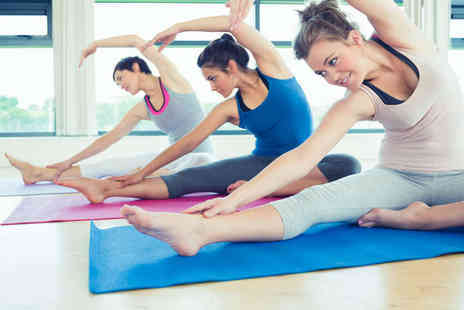 The Yoga & Pilates Place - Choice of Five Exercise Classes Including Hot Yoga, Yoga, Matt Pilates, Hot Pilates, Reformer Pilates - Save 79%