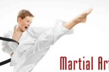JJBBA Martial Arts - Eight Kids Beginner Karate Lessons Plus One Private Lesson, Uniform and First Belt Grading - Save 88%