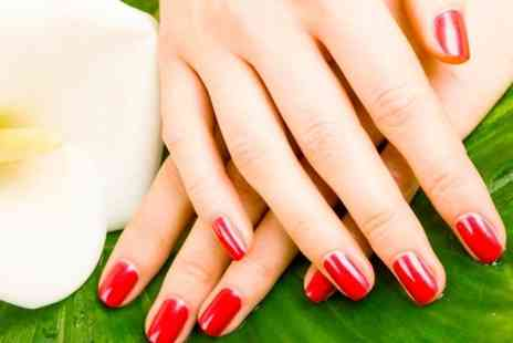 The i Bar  - Shellac Manicure or Pedicure or Both  - Save 45%