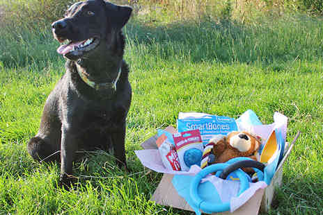 Toys and Treats for your Dog - My Dog Box - Save 36%