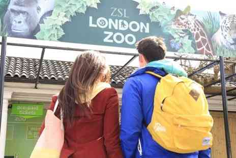 The London Pass - Unlimited Entry to Top Attractions, Including London Zoo, Tower of London and More - Save 50%