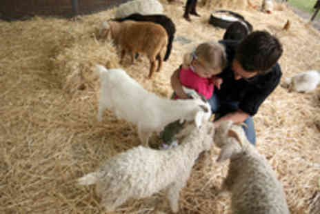 Shepherds Place  Farm - Family Entry to Shepherds Place Farm - Save 53%