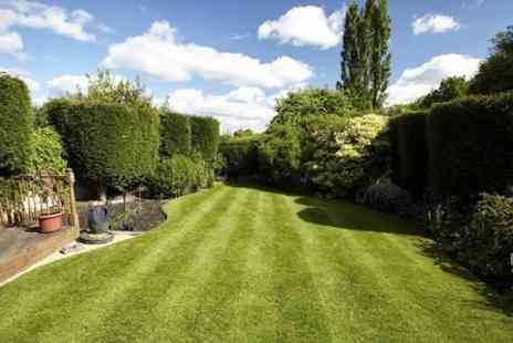 Greensleeves - Lawn Treatment and Weed Control - Save 50%
