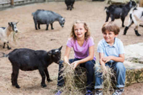Rays Farm - Entry to Rays Farm for up to Four  - Save 49%