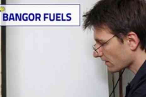 Bangor Fuels - Full Gas Boiler Service - Save 55%