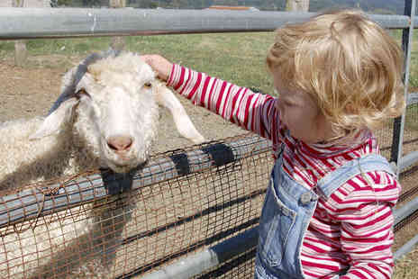 Spruce Meadows Activity Farm - Entrance to Activity Farm for Two Adults and up to Three Children with Barrel Ride Pass for Kids - Save 56%