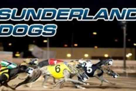 Sunderland Dogs - Night at Greyhound Racing For Two Including Admission, Drinks and Snack - Save 75%