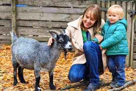 Church Farm -  Family Pass at Church Farm - Save 33%