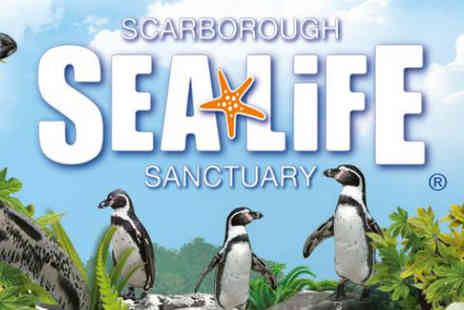Sea Life Scarborough - Tickets to Scarborough Sea Life Sanctuary - Save 50%