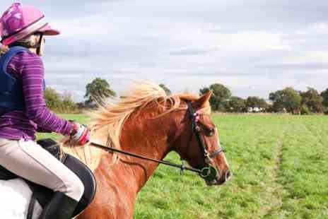 Croft Riding Centre - 60 Minute Horse Riding Lessons - Save 59%