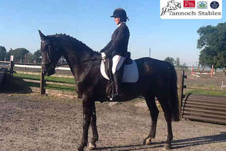 Tannoch Stables - 90-Minute Horse Riding Lesson - Save 60%