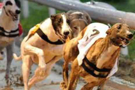 Kinsley Greyhound Stadium - Dog Racing for Two Including Bet, Meal, and Drink - Save 64%