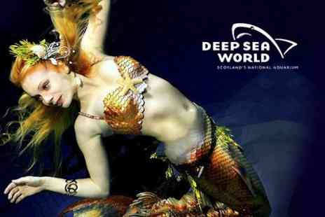 Deep Sea World - Ticket  to The Mermaids  - Save 50%