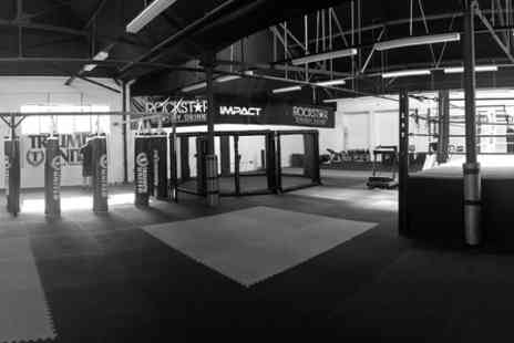 Impact Gym - One Month of Martial Arts Classes - Save 53%