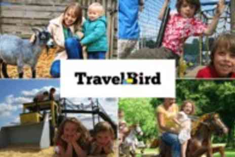 Old Macdonalds Farm - Explore all the fun of adventure rides, amusements, indoor and outdoor play  - Save 51%