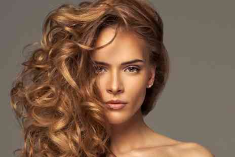 House of Beauty - Half head of highlights or full head of colour with a wash, cut and blow dry - Save 57%