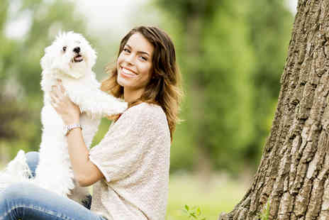 White Cross Vets - Annual booster & health check for a dog, cat or rabbit - Save 74%