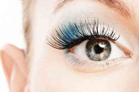 Premier Hairdressing - Eyelash Extensions Plus Eyebrow Shape and Tint - Save 80%