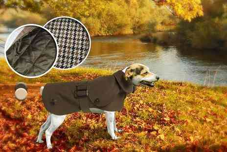 Puppy Kit - Quilt or tweed lined waterproof doggy trench coat - Save 60%
