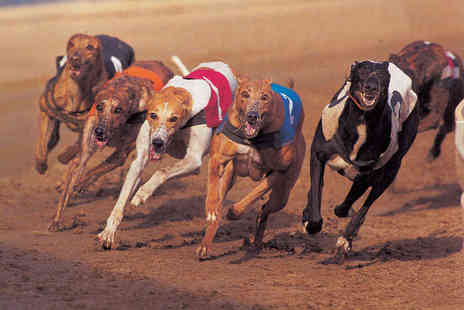 Kinsley Greyhound Stadium - Dog Racing for Two  Including Bet, Meal, and Drink Each - Save 67%