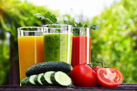 Juice Jungle - Three day juice and soup cleanse - Save 79%