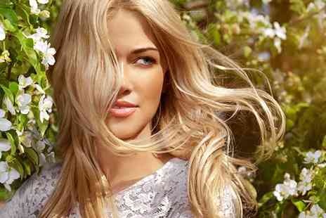 Alan Lawrence - Full head of highlights, cut and blow dry - Save 74%