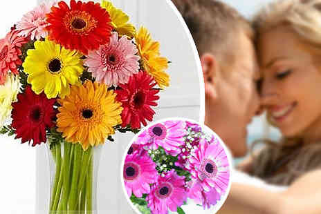 Flowersdelivery4u - 12 Gerberas Bouquet  - Save 41%
