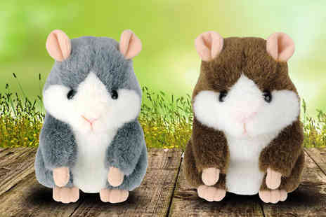 Online Gift Store - Talking Hamster - Save 54%