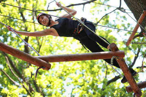 Ropes and Ladders - Halloween high ropes course or regular high ropes course  - Save 52%