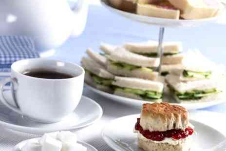 Romsey world of water  - Afternoon Tea For Two  - Save 50%