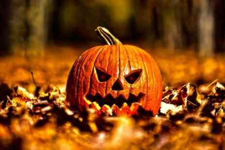 Fairytale Farm - The Fairytale is Over, Guided Tour  - Save 0%
