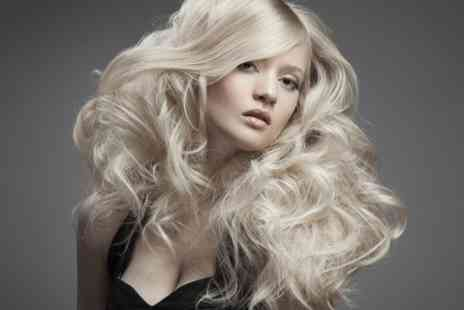 Fabulous Salon - Cut and Finish Plus Full-Head Tint  - Save 57%