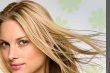 Perfection Express - Restyle and Conditioning Treatment Plus Half Head of Colour or T Section Foils - Save 72%
