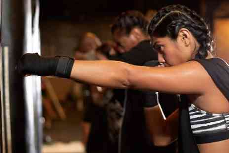 SK Boxing Gym - Ten Day Fitness Camp Passes - Save 56%