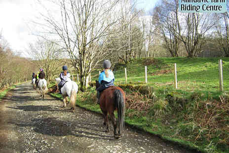 Milndavie Farm Riding Centre - Two Hour Long Horse Riding Lessons - Save 53%