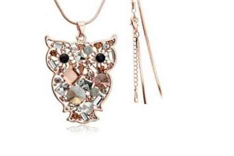 The One Lot - Owl Wisdom necklace  - Save 88%