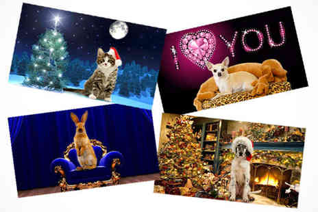 Superstar Pets - Make Your Pet Talk and Star in a Personalised Greeting Video - Save 60%