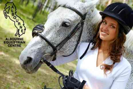 Albourne Equestrian Centre - Half  Day Equestrian Experience for £40 including Skills Assessment, Riding Lessons and Grooming - Save 60%