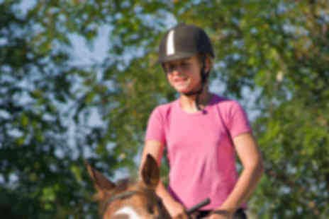 Grenoside Equestrian - 30 Minute Horse Riding Session - Save 53%
