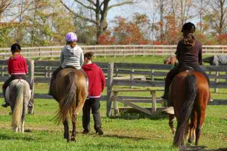 Stone House Hotel - One Hour Childrens Horse Riding Lesson - Save 35%