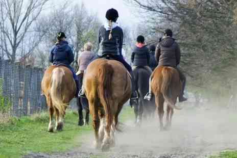 Sweetlands Riding School - Two Hour Countryside Riding Experience - Save 0%