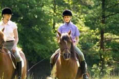 Moorhill Stables - One Hour Horse Riding Trek - Save 60%